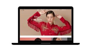 shagufta website design (1)